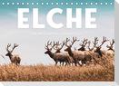 Elche - Die imposanten Trughirsche. (Tischkalender 2022 DIN A5 quer)