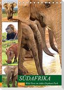 SÜDAFRIKA Wild-Tiere im Addo Elephant Park (Tischkalender 2022 DIN A5 hoch)