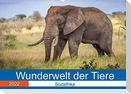Wunderwelt der Tiere - Südafrika (Wandkalender 2022 DIN A2 quer)