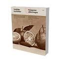 Vorbilder Nachbilder. Die fotografische Lehrsammlung der Universität der Künste Berlin 1850-1930
