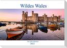 Wildes Wales (Wandkalender 2022 DIN A2 quer)