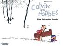 Calvin & Hobbes 11 - Eine Welt voller Wunder