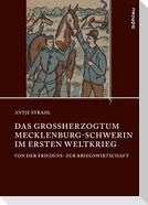 Das Großherzogtum Mecklenburg-Schwerin im Ersten Weltkrieg