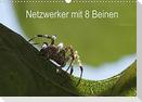Netzwerker mit 8 Beinen (Wandkalender 2022 DIN A3 quer)