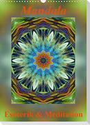 Mandala - Esoterik & Meditation (Wandkalender 2021 DIN A3 hoch)