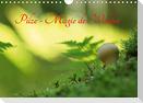 Pilze - Magie des Waldes (Wandkalender 2021 DIN A4 quer)
