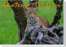 Abenteuer Tansania, Afrika (Wandkalender 2022 DIN A2 quer)