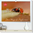 Die Magie der Tropfen 2022 (Premium, hochwertiger DIN A2 Wandkalender 2022, Kunstdruck in Hochglanz)