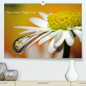Siebenhühner, Gabi. Kalender (Premium, hochwertig
