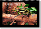 Krabbeltiere (Wandkalender 2022 DIN A3 quer)