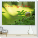 Pilze - Magie des Waldes (Premium, hochwertiger DIN A2 Wandkalender 2021, Kunstdruck in Hochglanz)