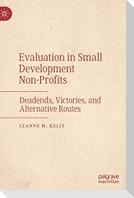 Evaluation in Small Development Non-Profits