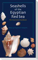 Seashells of the Egyptian Red Sea: The Illustrated Handbook