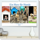 Ein Herz für Hunde - Kettenhunde in Russland (Premium, hochwertiger DIN A2 Wandkalender 2022, Kunstdruck in Hochglanz)
