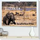 Elefanten - Die sanften Riesen Afrikas (Premium, hochwertiger DIN A2 Wandkalender 2022, Kunstdruck in Hochglanz)