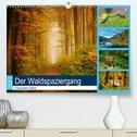 Der Waldspaziergang (Premium, hochwertiger DIN A2 Wandkalender 2021, Kunstdruck in Hochglanz)