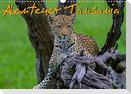 Abenteuer Tansania, Afrika (Wandkalender 2022 DIN A3 quer)