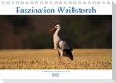 Faszination Weißstorch (Tischkalender 2021 DIN A5 quer)
