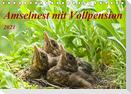 Amselnest mit Vollpension (Tischkalender 2021 DIN A5 quer)