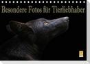 Besondere Fotos für Tierliebhaber (Tischkalender 2021 DIN A5 quer)