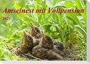 Amselnest mit Vollpension (Wandkalender 2021 DIN A2 quer)