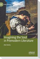 Imagining the Soul in Premodern Literature