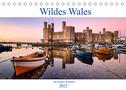 Wildes Wales (Tischkalender 2022 DIN A5 quer)