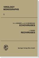 Echoviruses and Reoviruses
