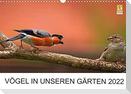 Vögel in unseren Gärten 2022 (Wandkalender 2022 DIN A3 quer)