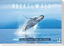 Buckelwale: Aus den blauen Tiefen der Ozeane (Tischkalender 2022 DIN A5 quer)