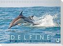 Delfine: Elegante Wellenreiter (Tischkalender 2022 DIN A5 quer)