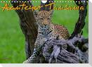 Abenteuer Tansania, Afrika (Wandkalender 2022 DIN A4 quer)