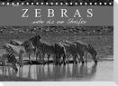 Zebras - Mehr als nur Streifen (Tischkalender 2022 DIN A5 quer)