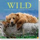 Wild 2022 Wall Calendar: Untamed Animals, Untouched Landscapes