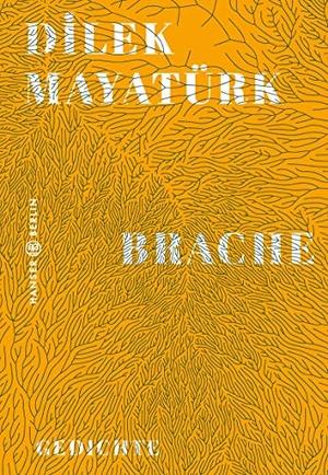 Mayatürk, Dilek. Brache - Gedichte. Hanser Berlin