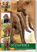 SÜDAFRIKA Wild-Tiere im Addo Elephant Park (Wandkalender 2022 DIN A3 hoch)