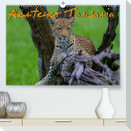 Abenteuer Tansania, Afrika (Premium, hochwertiger DIN A2 Wandkalender 2022, Kunstdruck in Hochglanz)