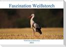 Faszination Weißstorch (Wandkalender 2021 DIN A3 quer)