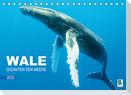 Wale: Giganten der Meere (Tischkalender 2022 DIN A5 quer)