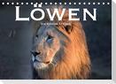 Löwen. Die Könige Afrikas (Tischkalender 2022 DIN A5 quer)