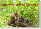 Amselnest mit Vollpension (Wandkalender 2021 DIN A4 quer)