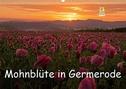 Mohnblüte in Germerode (Wandkalender 2021 DIN A2 quer)