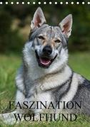 Faszination Wolfhund (Tischkalender 2021 DIN A5 hoch)