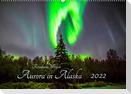 Aurora in Alaska (Wandkalender 2022 DIN A2 quer)