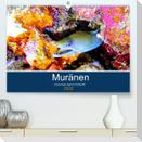 Muränen - Kurzsichtige Jäger im Korallenriff (Premium, hochwertiger DIN A2 Wandkalender 2022, Kunstdruck in Hochglanz)