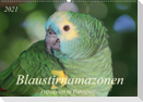 Blaustirnamazonen - Papageien in Paraguay (Wandkalender 2021 DIN A2 quer)