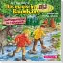 Rettungsmission im Naturpark (Das magische Baumhaus 59)